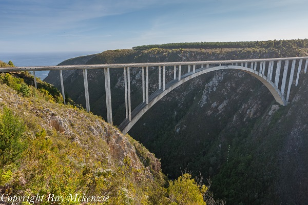 South Africa Day 5 with Neale Bayly and Anthony Carrino Bungee 1